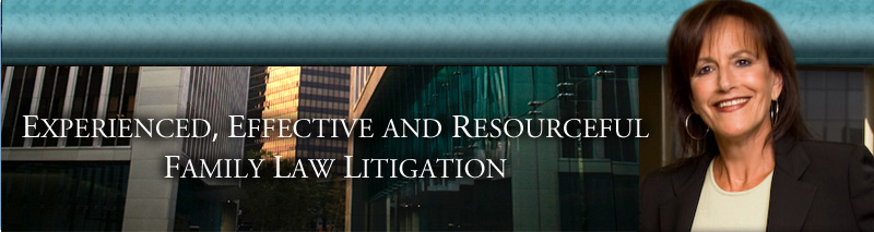 Experienced, Effective and Resourceful Family Law Litigation